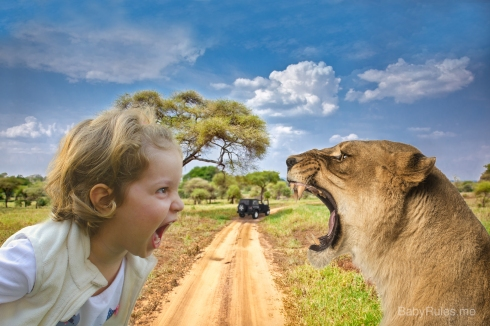 kid with a lion in the safari