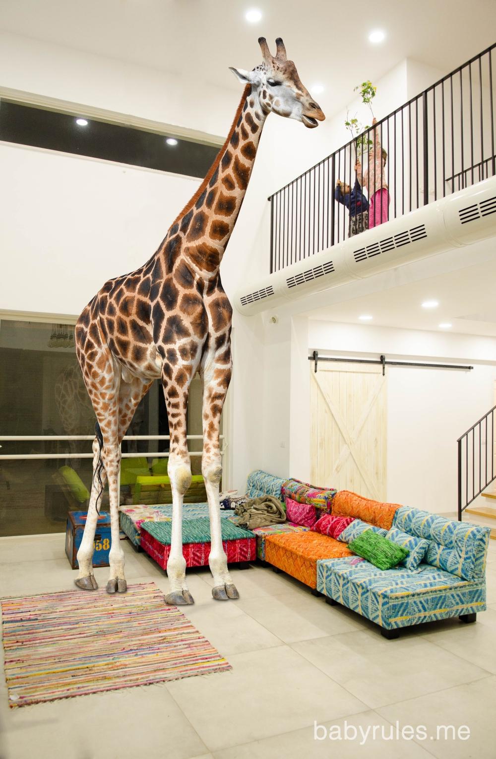 GiraffeMark